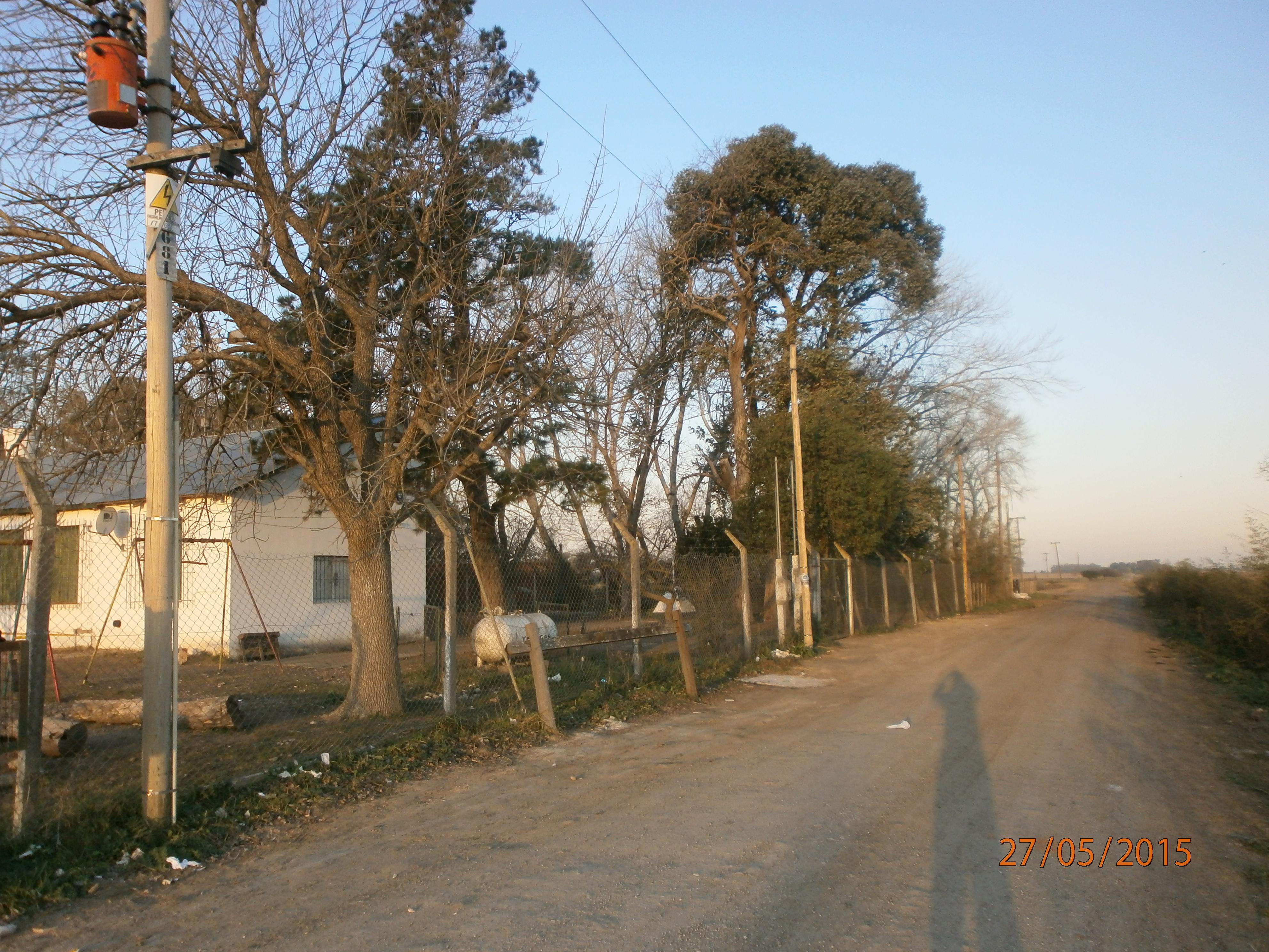 La Escuela 20 de Poblet (Pablo Calvo)