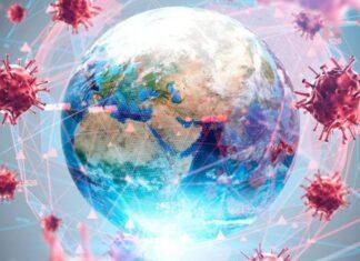 Imagen: anred.org